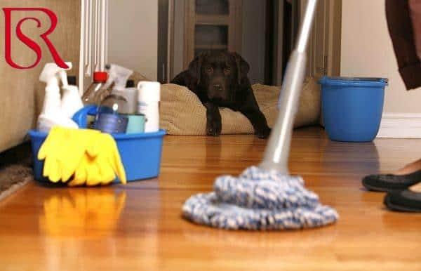 ما هي أفضل شركة تنظيف منازل ؟ وماذا تقدم؟