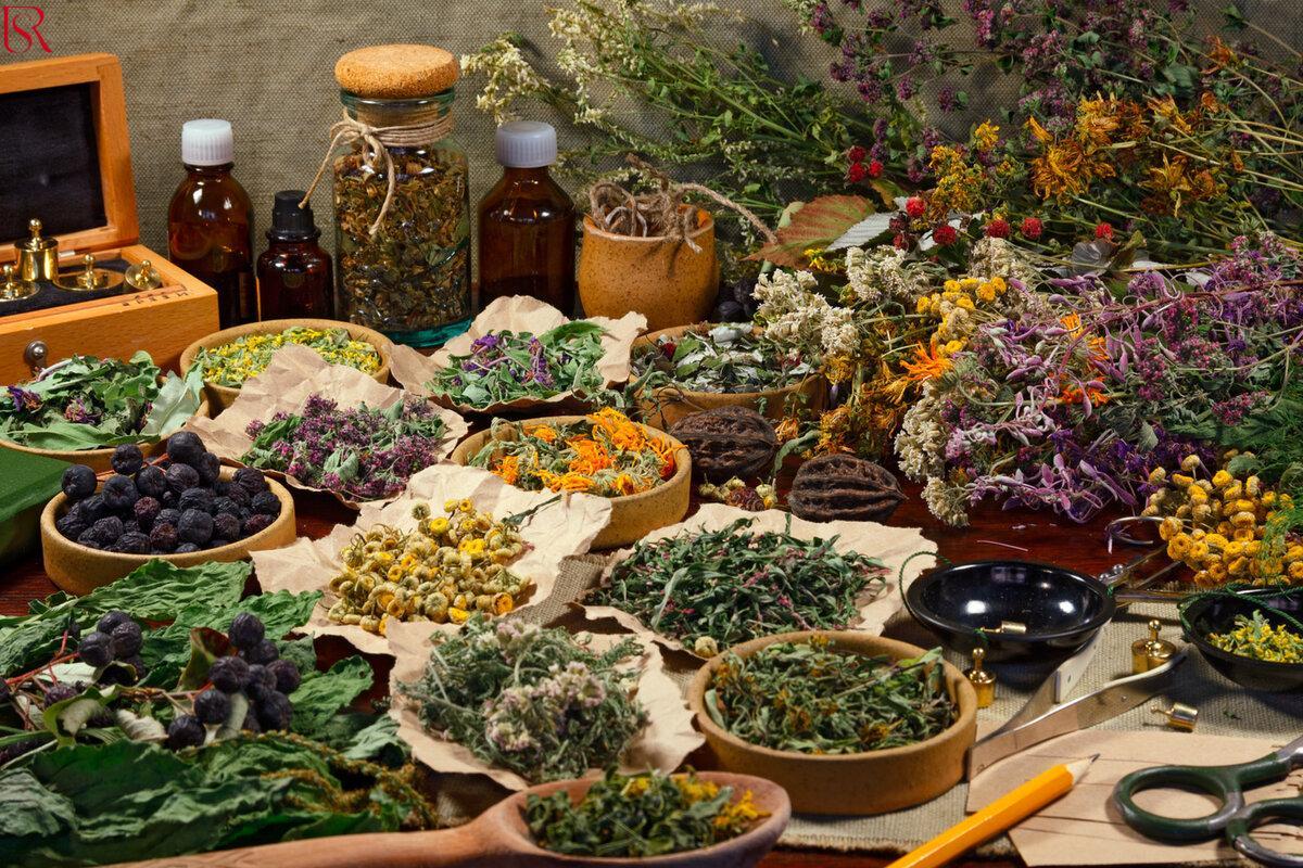 علاج الكورونا بالأعشاب